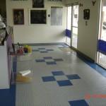 Front Showroom: Diamondtrax