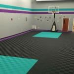 Williams Basketball Gym: Ribtrax